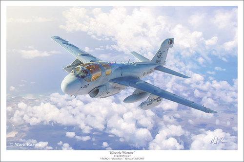 EA-6B-Prowler-16x24-Print-700.jpg