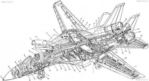 f14-detail-cutaway-xl.jpg