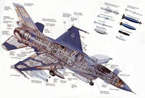 F16cutaway.jpg